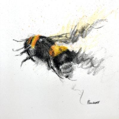 Charcoal Bee 03