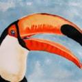 Toucan - watercolour
