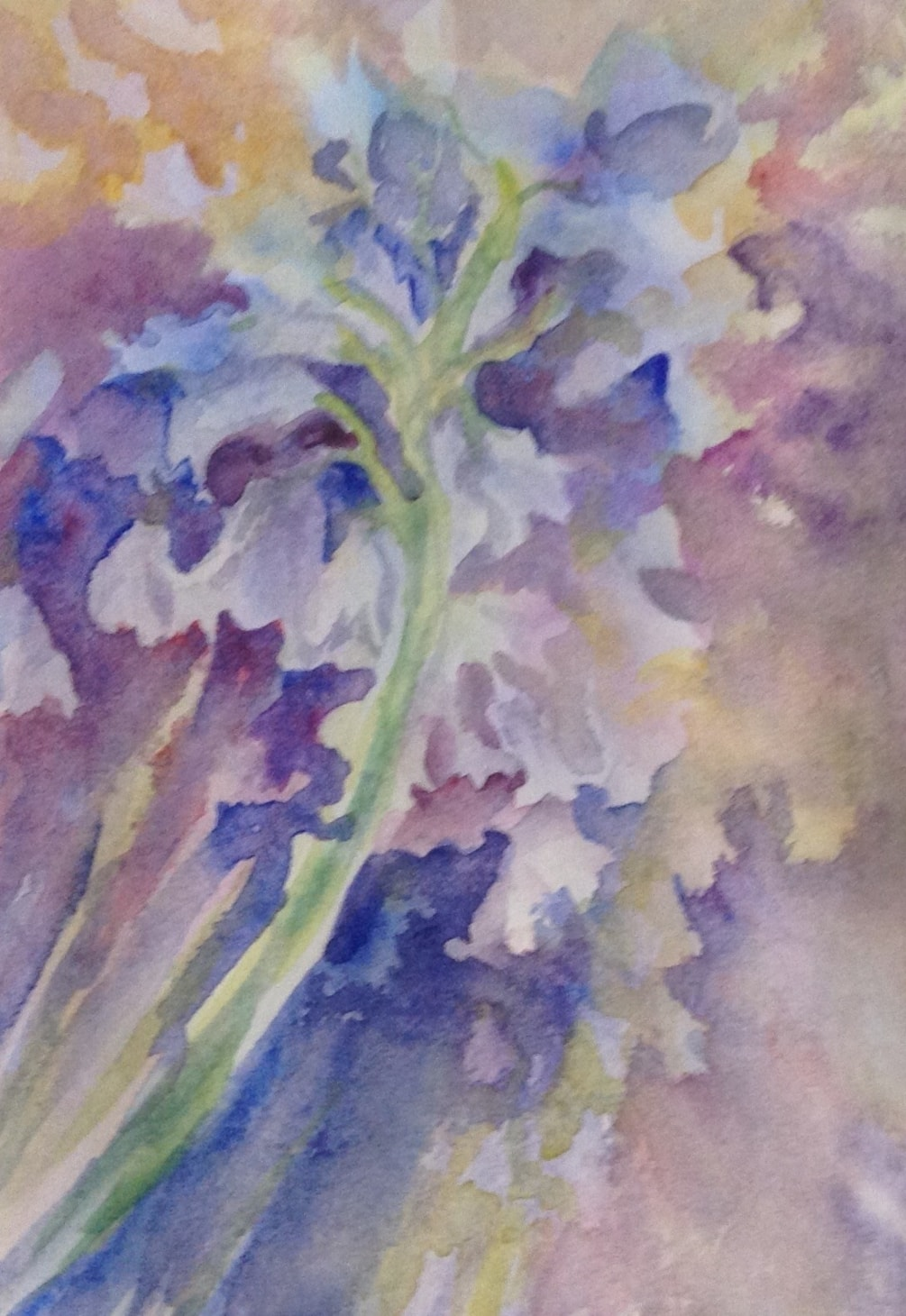 A negative painting of Bluebells