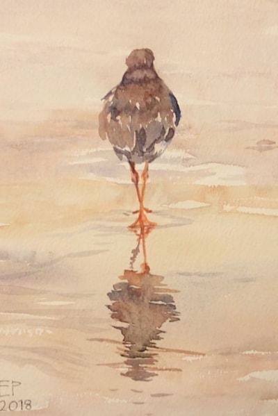 Reflecting redshank - low tide