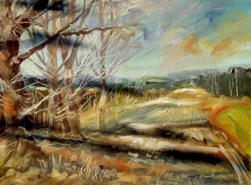 Ash Trees, Moreton.