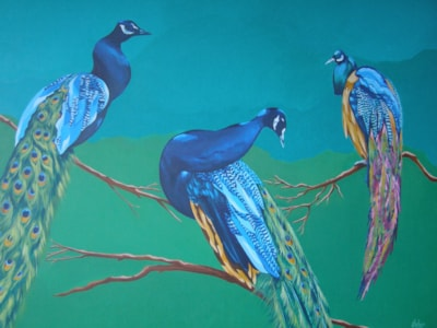 """Peacocks, No1. 2016. Acrylic on stretched canvas, 40""""x30""""."""