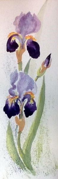 ONE DAY I WILL HAVE PAINTED ENOUGH IRISES