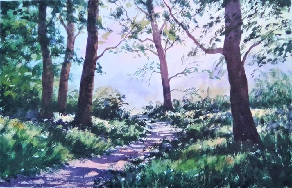 Light Through Trees, Galleywood Common.