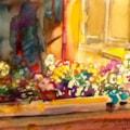 Violas in Rosie's kitchen