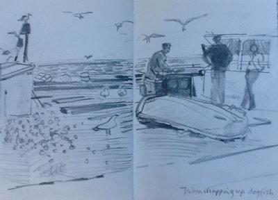 John chopping up dogfish