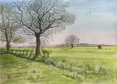A walk in the fields