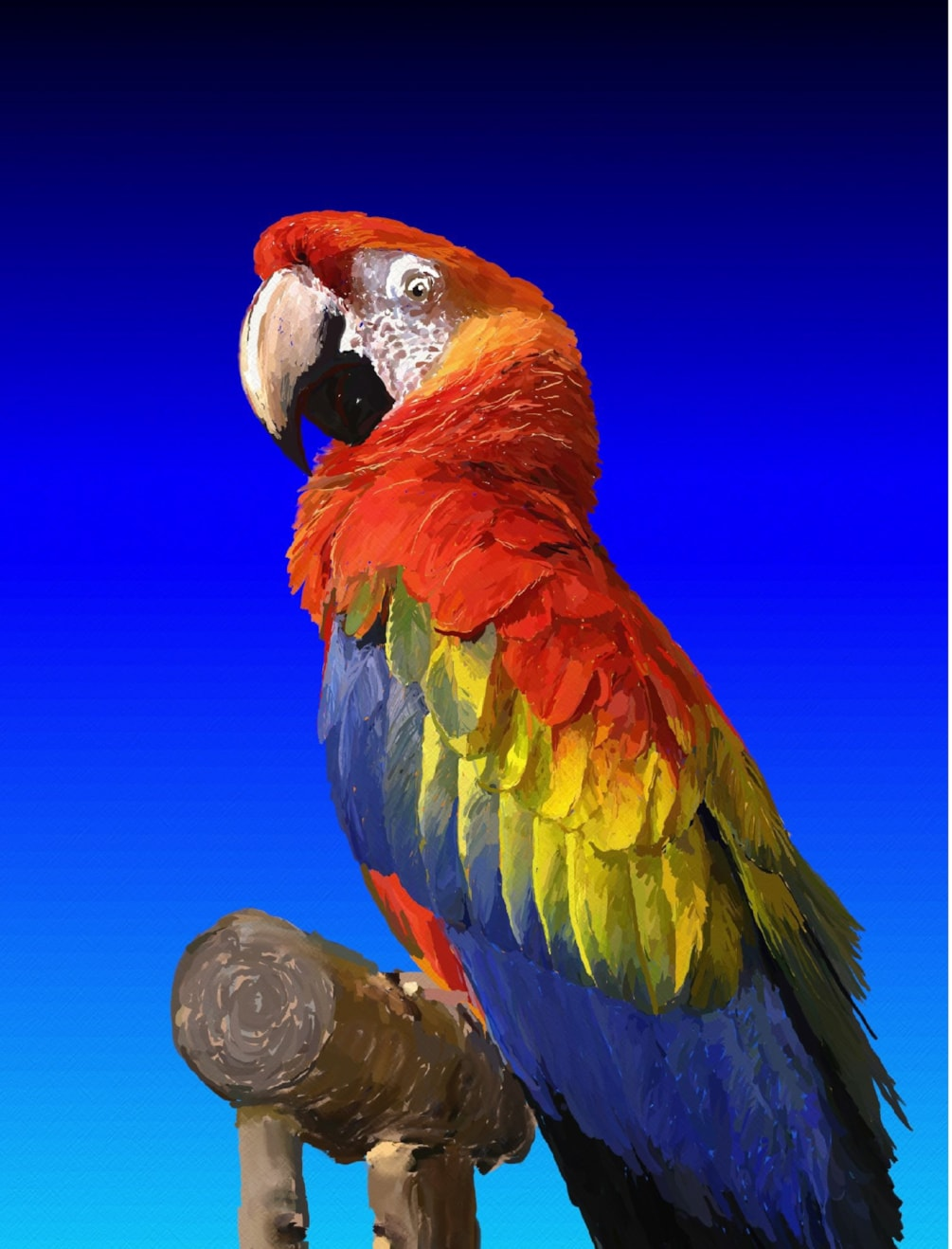 One More Macaw
