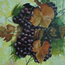 Grapes Still Life