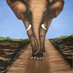 The big Elephant - finished version