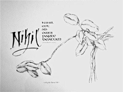 Nihil...