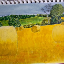 from sketchbooks bales