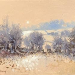 frosty morning blackhills