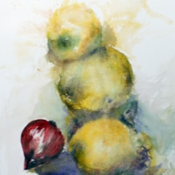 lemons and red onion