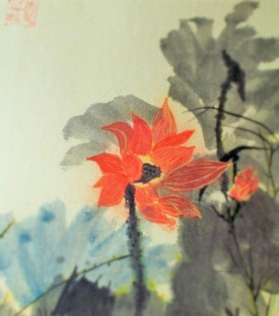 lotus 3 resize