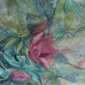 magnolia campbellii 2 72