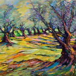 olive trees 2_InPixio
