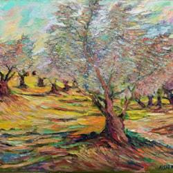 olive trees last_InPixio