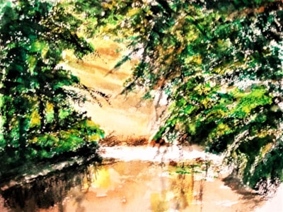 pond 44 (3)
