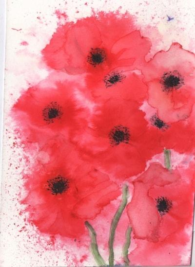 poppies2 002