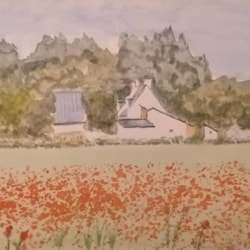 poppies Chouse