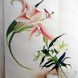 pure as lilies, signed