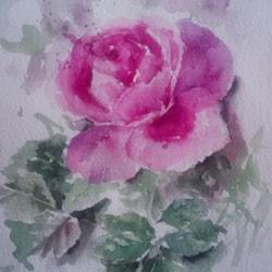 róza pazdz tiny