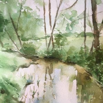 rzeka tiny