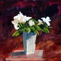 sk2020-10-12 Aldi Roses
