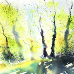 splatter trees 1054