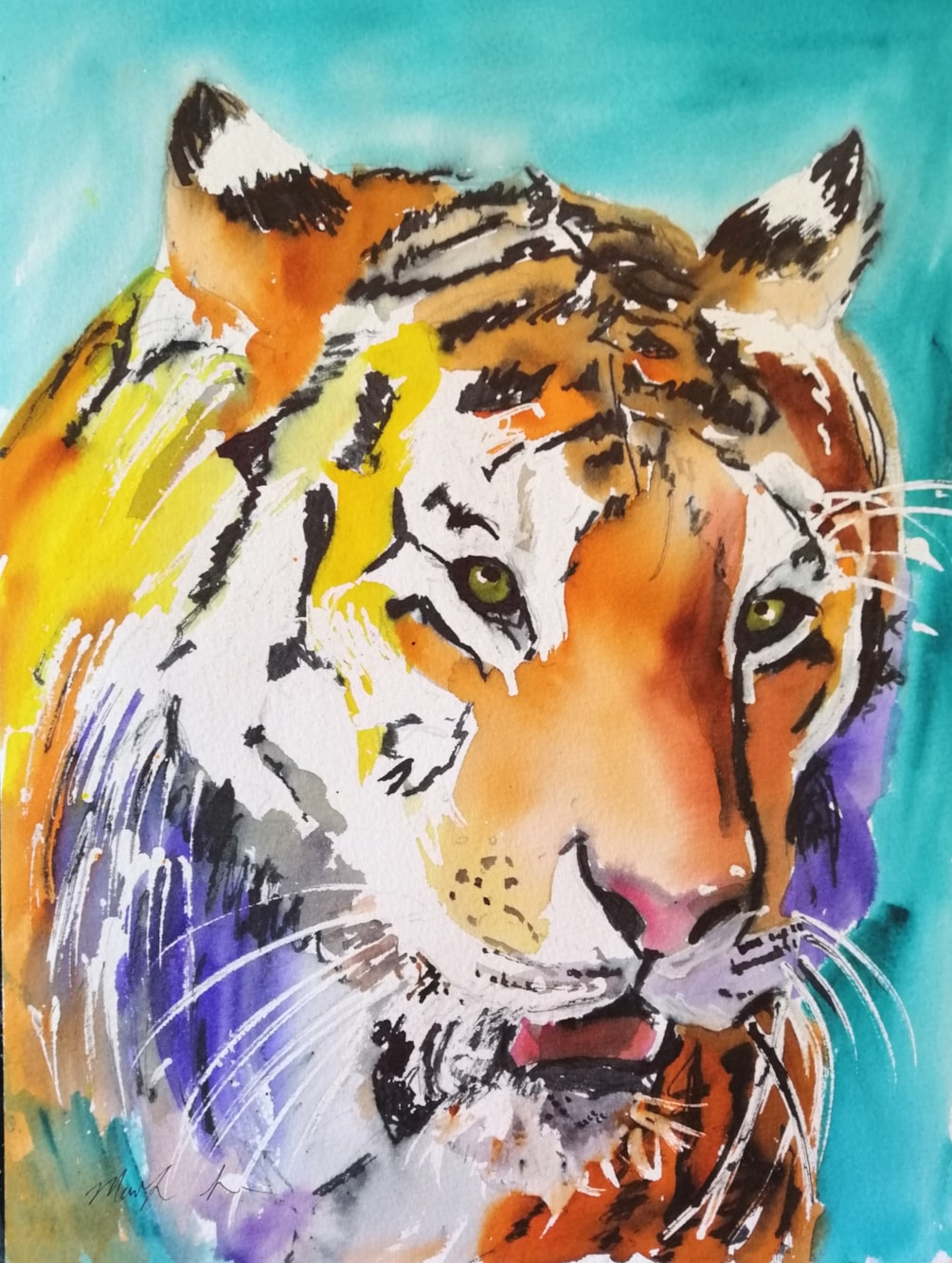 tiger viviva