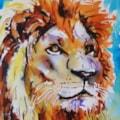 viviva lion