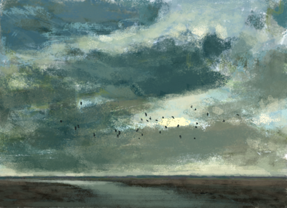 wijdfowl over the mudflats