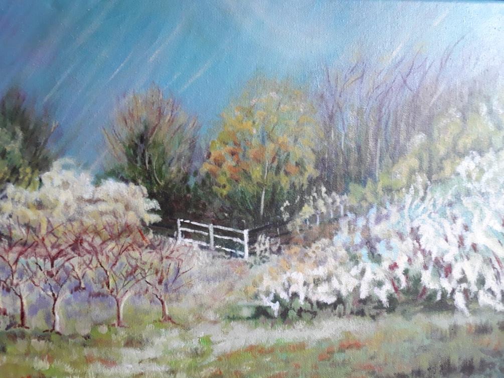 windy spring (2)