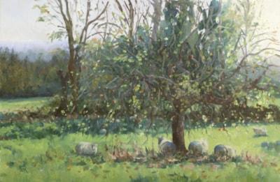 Fran Russell Hazy Sun in Autumn Orchard