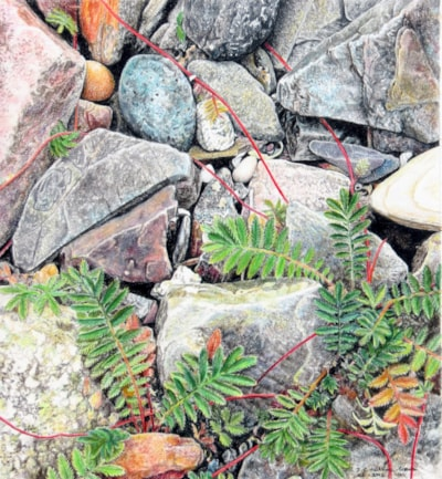 Lagavulin on the rocks,..
