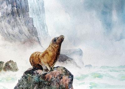 Seal-1