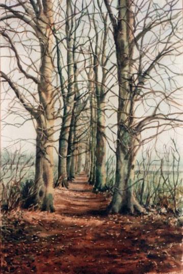 narrow path 2