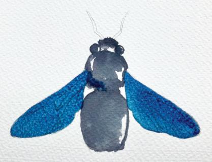 Painting bee wings