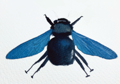 Painting a bee