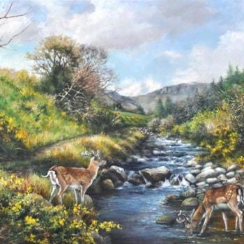 Fallow Bucks by the Mahon river, Comeragh Mountains - Copy (640x456)