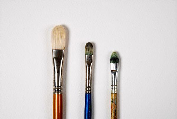 Filbert paint brushes
