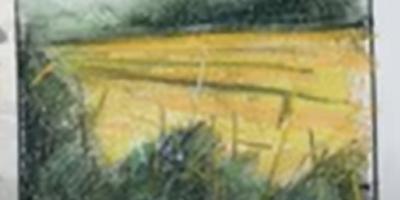 TC_Sketch