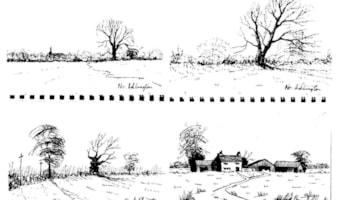 adlington 4 (2)