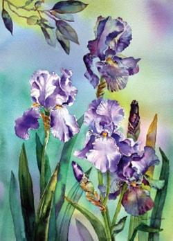 Irises and eucalyptus, watercolour painting