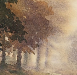 soft-edged trees