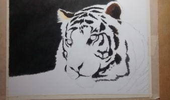 tiger 1 rotated