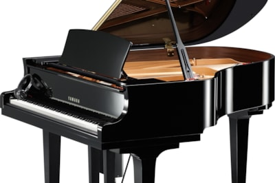 Yamaha C2X Enspire