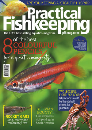 Practical Fishkeeping Magazine Cover March 2019