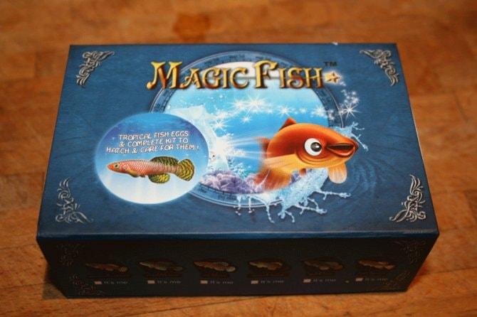 Magic Fish Review Practical Fishkeeping